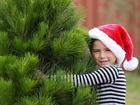 Free photos with Santa, crafts, more holiday fun