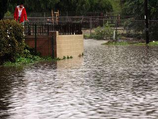 Watch: Lamborghini driver braves flooded street
