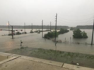 Houston reporter rescues motorist in flood