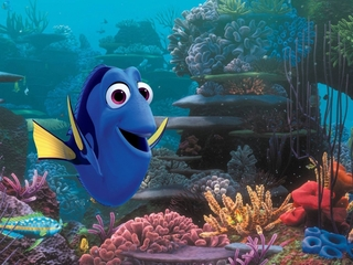 'Finding Dory' might be bad for ocean life