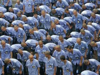 Is China still harvesting organs from prisoners?