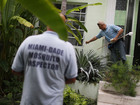 Zika diagnostics test given emergency approval