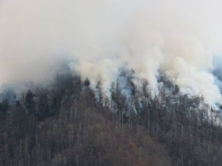 Tennessee wildfires 'likely to be human-caused'