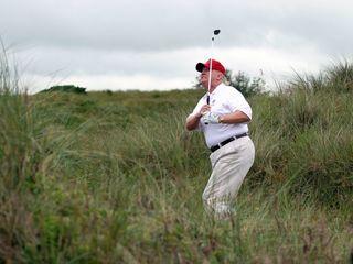 Tiger Woods: Donald Trump has a good golf swing