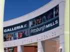 Pittsburgh mall purchased for $100 at auction