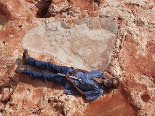 Researchers find world's biggest dinosaur track