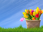 Mom's best weather advice — Mother's Day