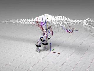 The T. rex was a walker, not a runner