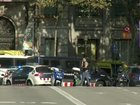 Police kill 4 'terrorists' in operation