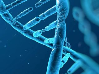Scientists create safety net for modified genes