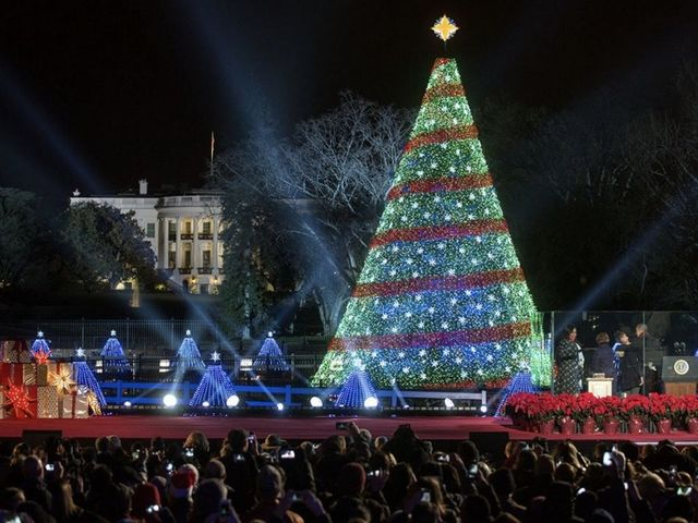 the history of the national christmas tree newsy story - Christmas Tree History