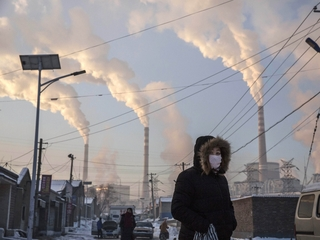 B vitamins might reduce effects of air pollution