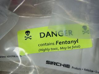 31 pounds of fentanyl seized near US border