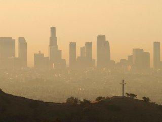 Prenatal exposure to pollution may shorten life