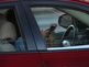 Texting, driving bans continue to fail to pass