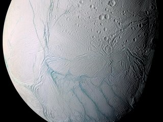 How life might survive on Enceladus