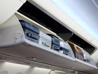 Dog dies in United Airlines overhead bin