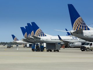 More pets die on United than other US airlines