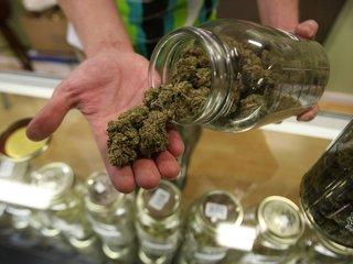 Studies: Legal marijuana could curb opioid use