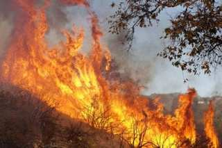 71 dead, more than 1,000 missing in wildfire